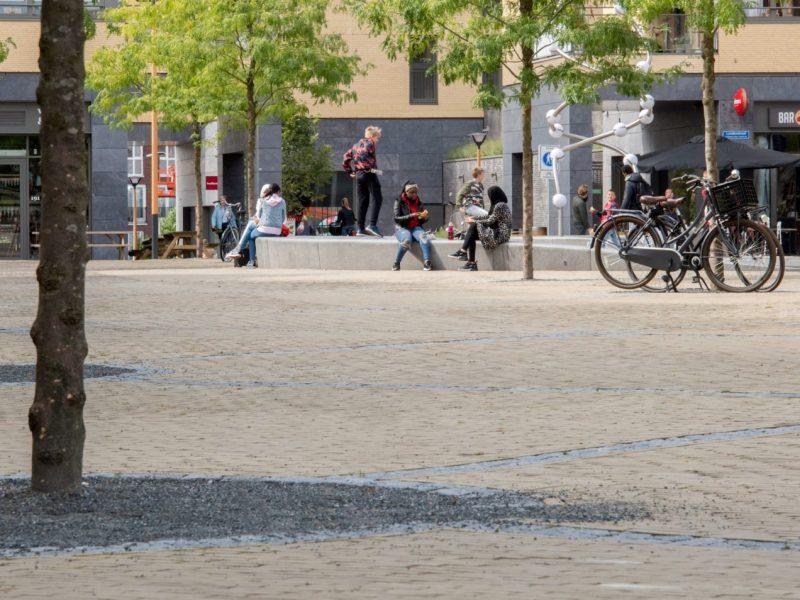 BVB Landscaping bomen in verharding Utrecht Bomengranulaat Urbangranulaat Bomenzand