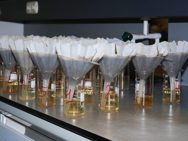 BVB Substrates Landscaping Research openbaar groen
