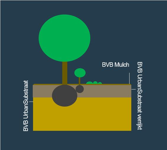 BVB Landscaping Groeiplaats open grond Urbansubstraat mulch bomen heersters vaste planten