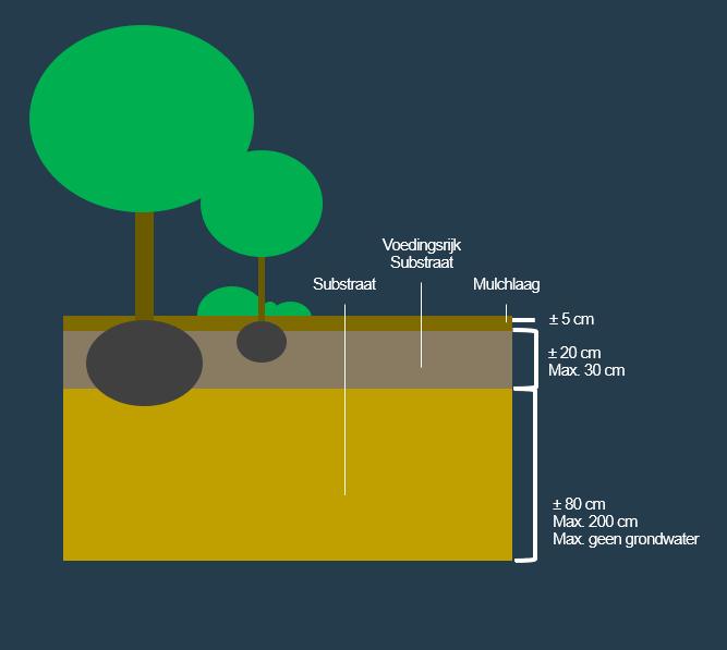 BVB Landscaping Open grond groeiplaats bomen planten heesters substraat mulch