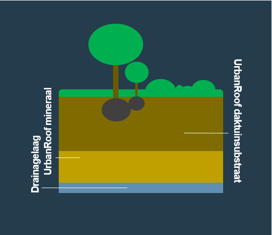 BVB Landscaping daktuinsubstraat daktuin intensief bomen heesters UrbanRoof
