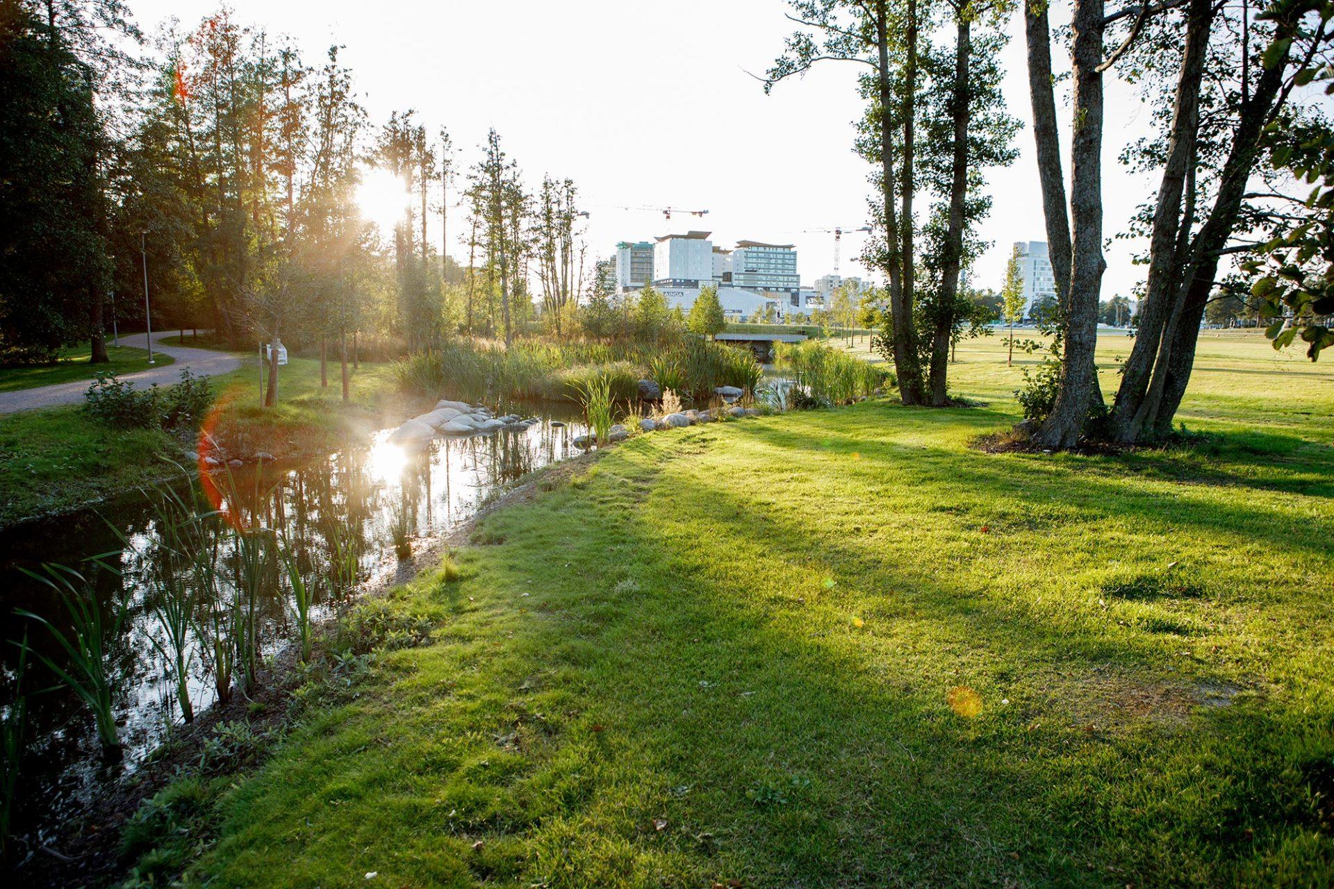 BVB Landscaping openbaar groen substraten