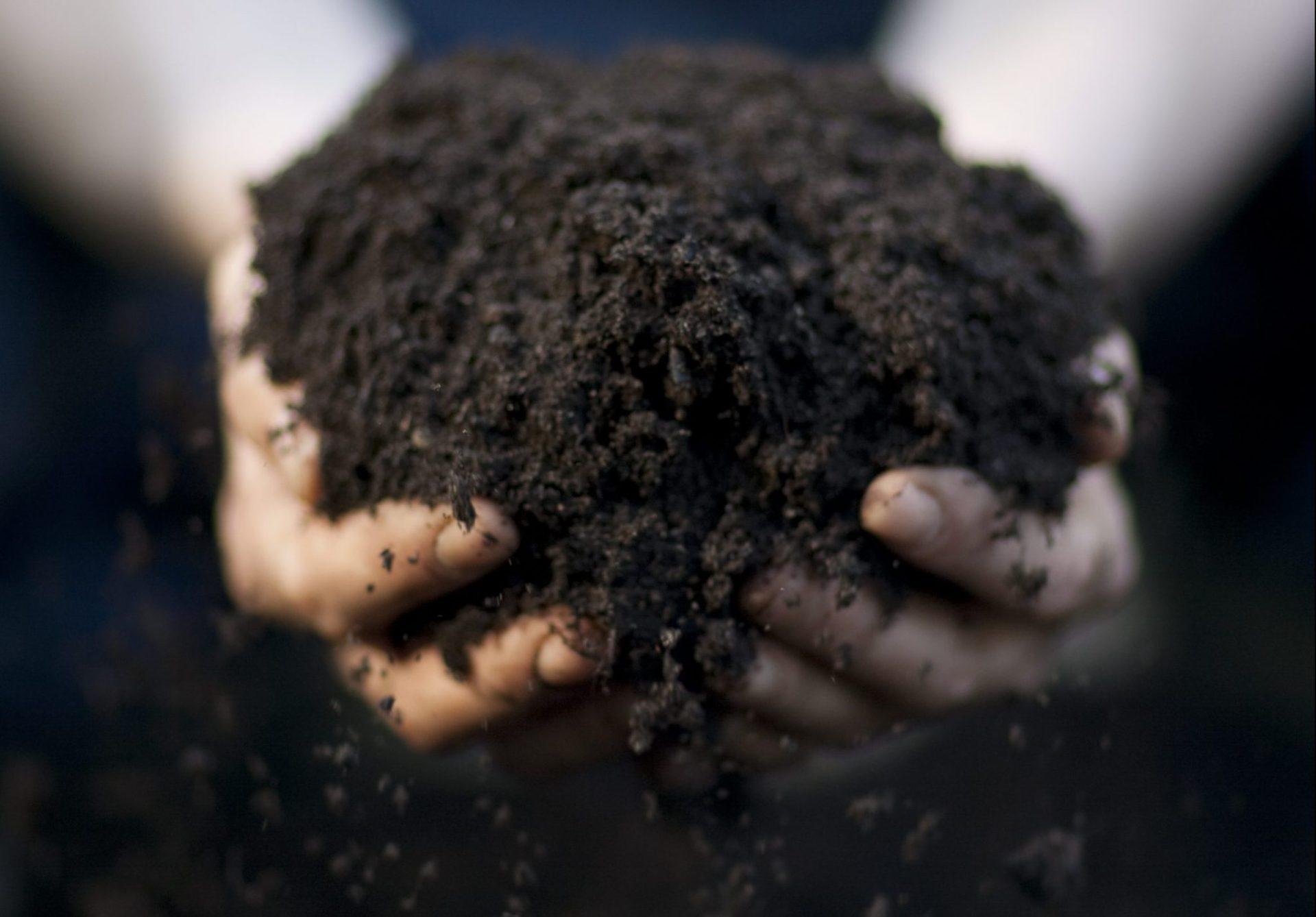 BVB Landscaping Kwaliteit duurzaamheid substraten openbaar groen groeimedia