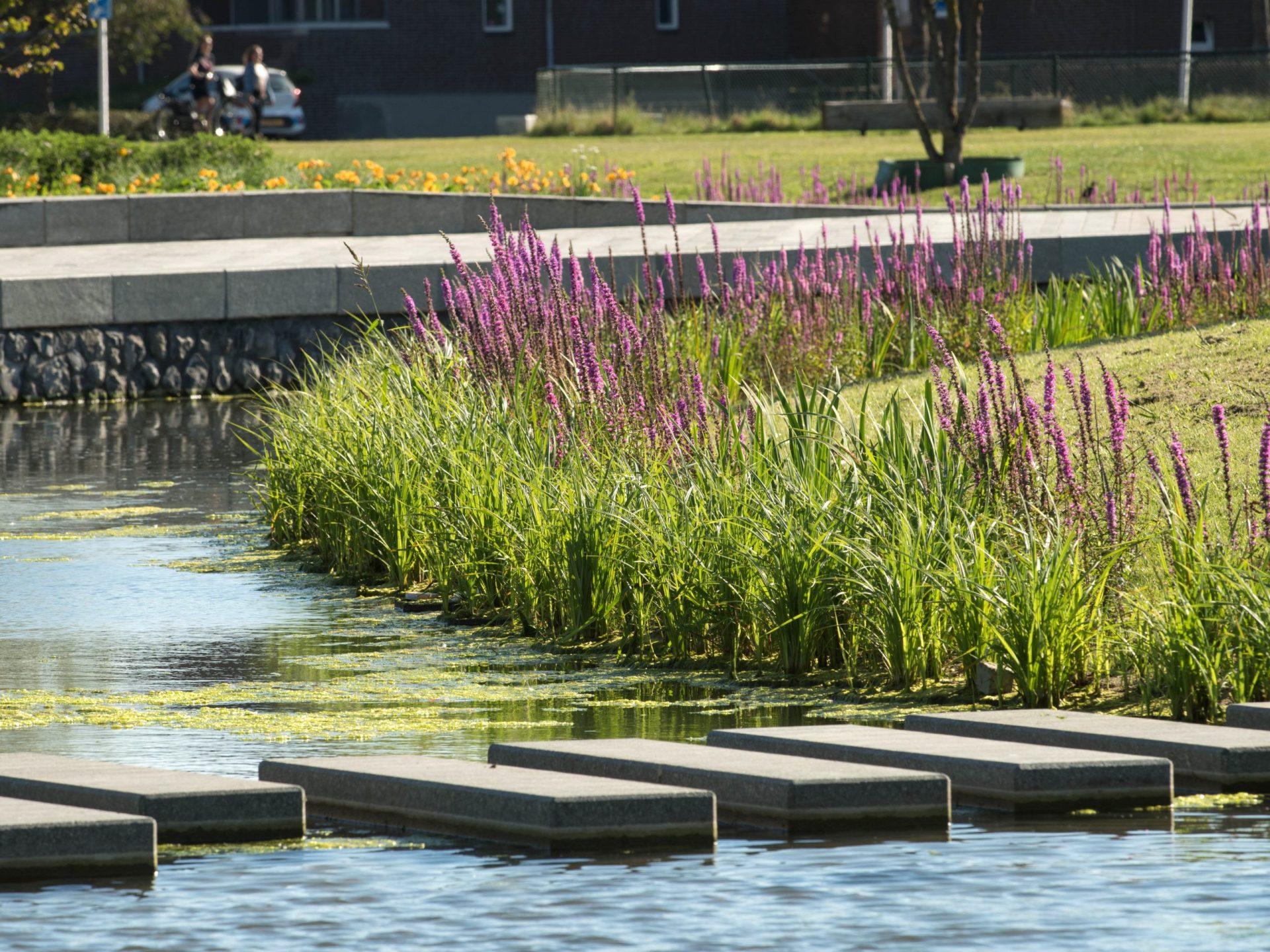 BVB Landscaping Helmond Geukerspark kwaliteit duurzaamheid