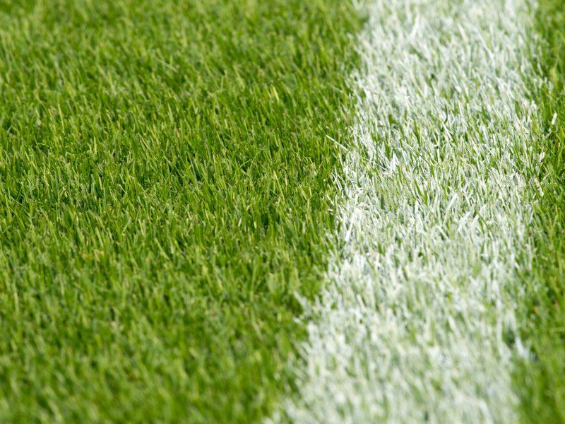 BVB Landscaping Rotterdam Feyenoord grasmat voetbalveld sportveld golfbaan aanleg onderhoud dressgrond