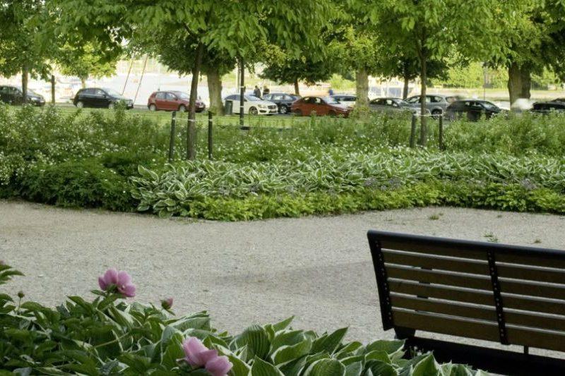 BVB Landscaping groeiplaats open grond